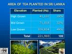 area of tea planted in sri lanka