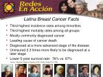 latina breast cancer facts