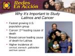 why it s important to study latinos and cancer