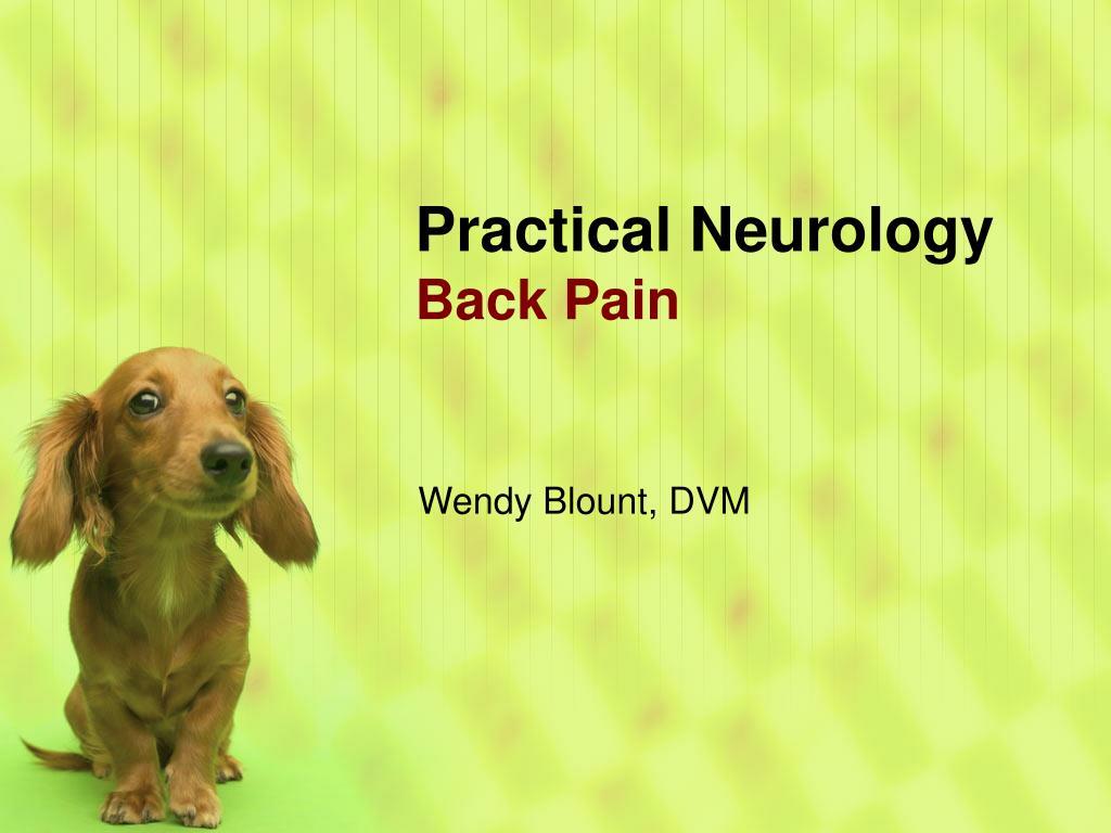 practical neurology back pain l.