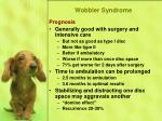 wobbler syndrome46