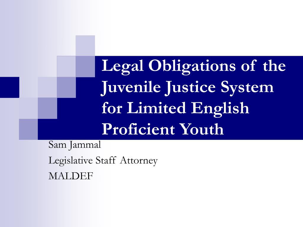legal obligations of the juvenile justice system for limited english proficient youth l.