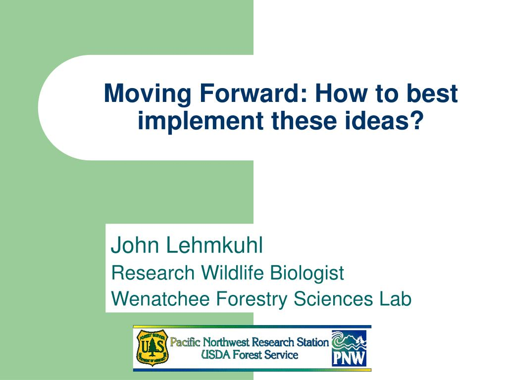 moving forward how to best implement these ideas l.