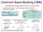 constraint based modeling cbm mathematical representation of constrains