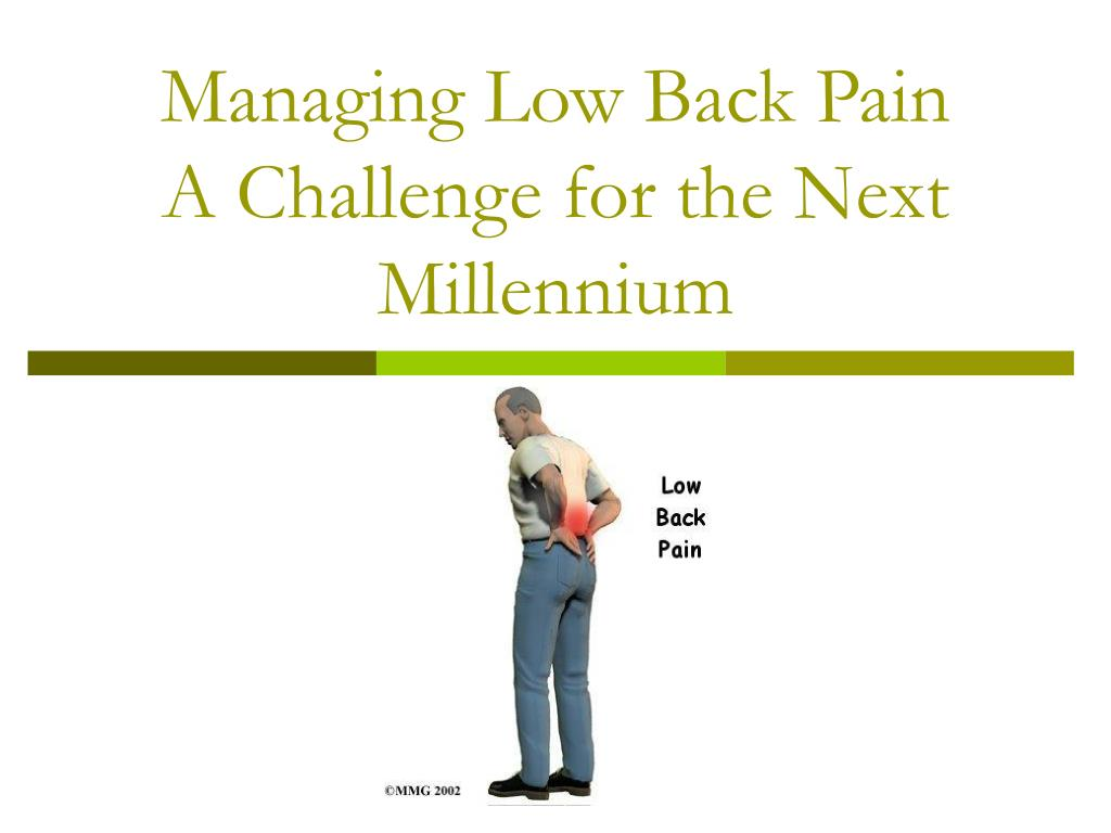 managing low back pain a challenge for the next millennium l.