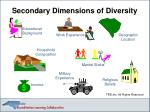 secondary dimensions of diversity