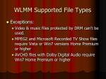 wlmm supported file types3
