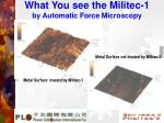 what you see the militec 1 by automatic force microscopy