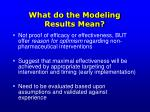 what do the modeling results mean