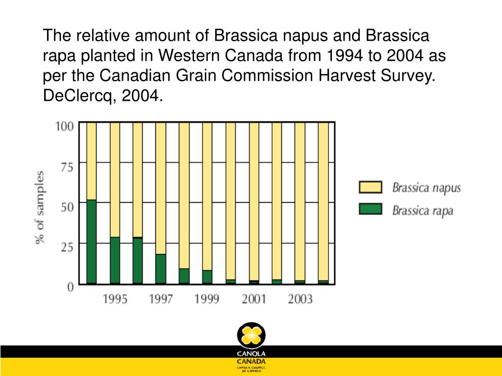 The relative amount of Brassica napus and Brassica rapa planted in Western Canada from 1994 to 2004 as per the Canadian Grain Commission Harvest Survey. DeClercq, 2004.