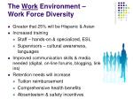 the work environment work force diversity