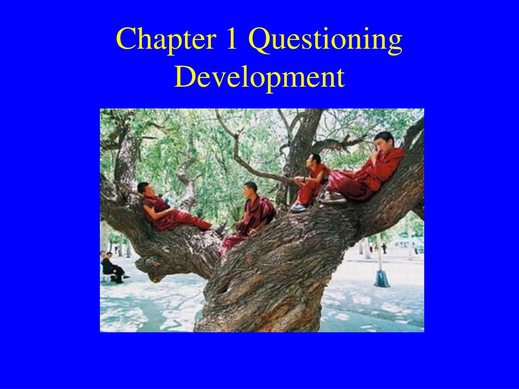 chapter 1 questioning development l.