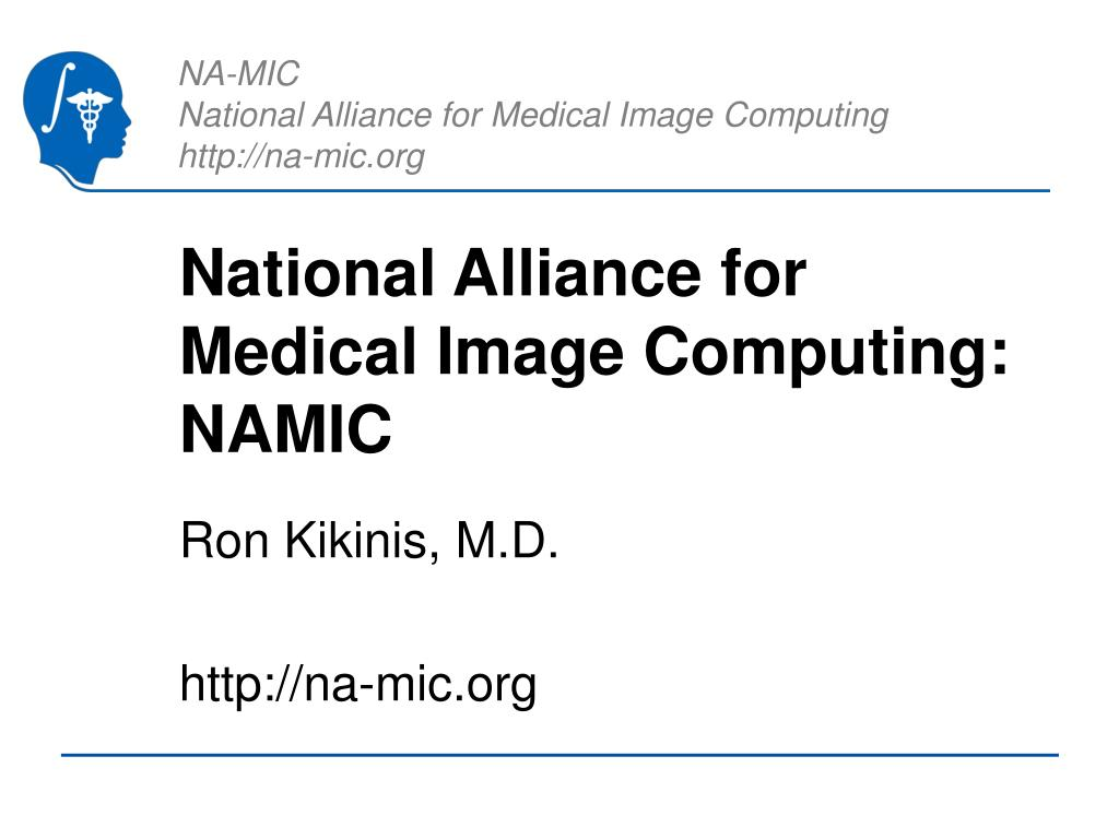 national alliance for medical image computing namic l.