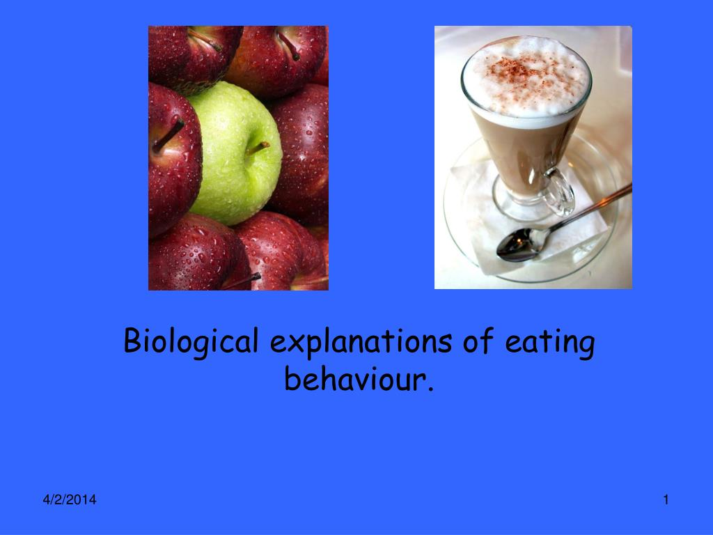 biological explanations of eating behaviour l.