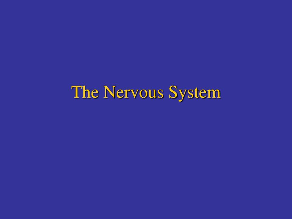 the nervous system l.