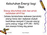 kebutuhan energi bagi ikan