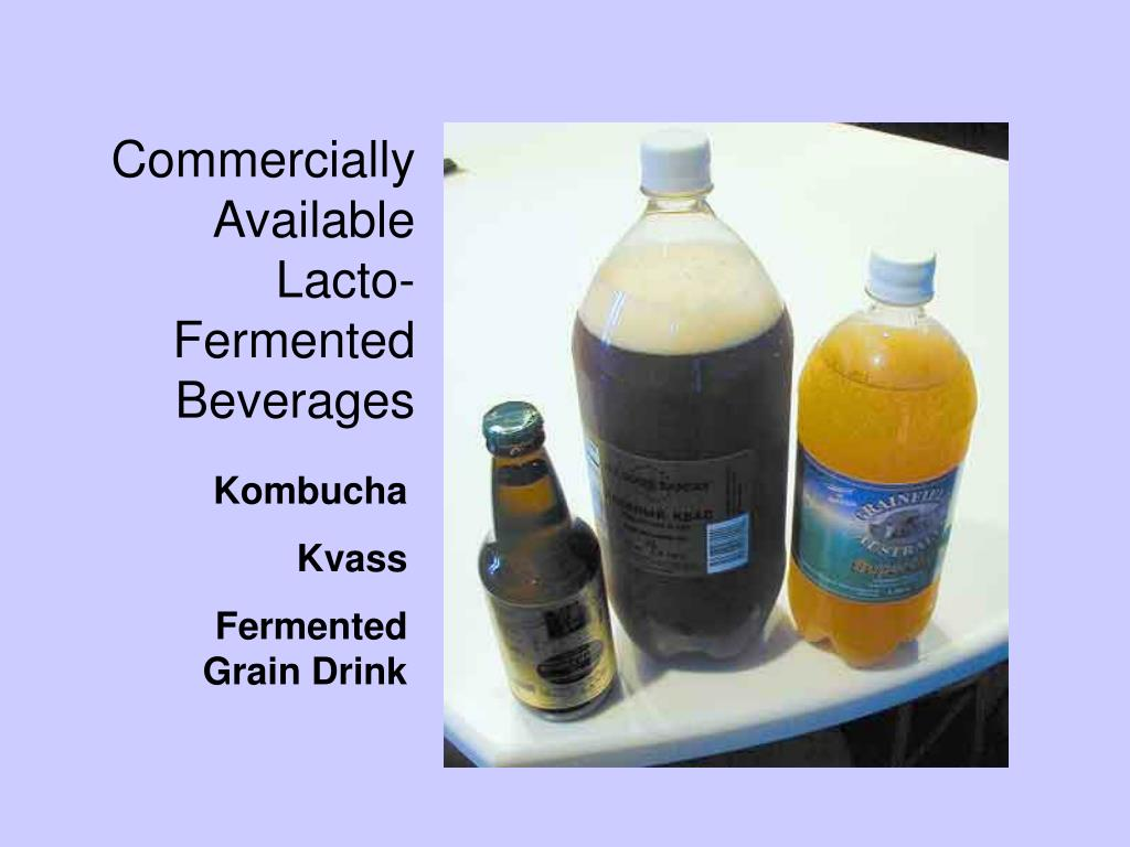 Lacto-Fermented Drinks