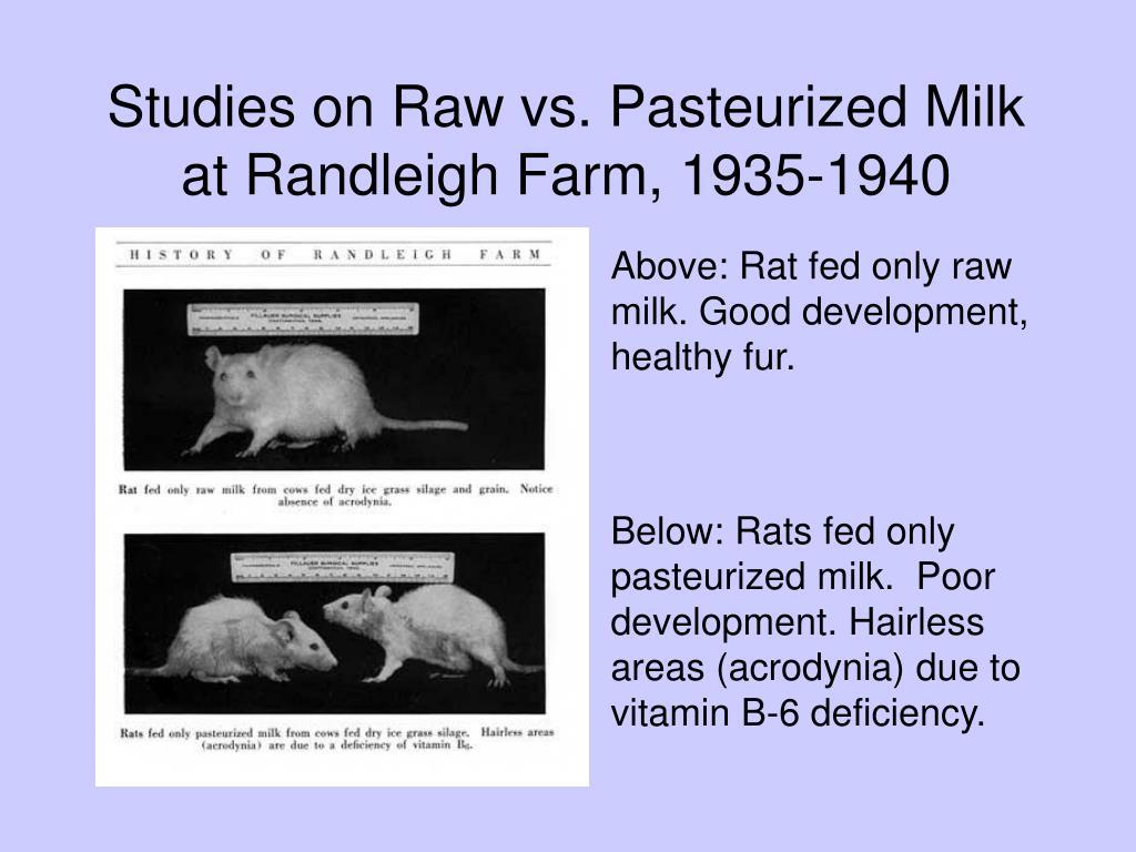 Studies on Raw vs. Pasteurized Milk at Randleigh Farm, 1935-1940