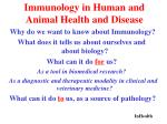 immunology in human and animal health and disease