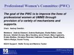 professional women s committee pwc