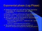 exponential phase log phase
