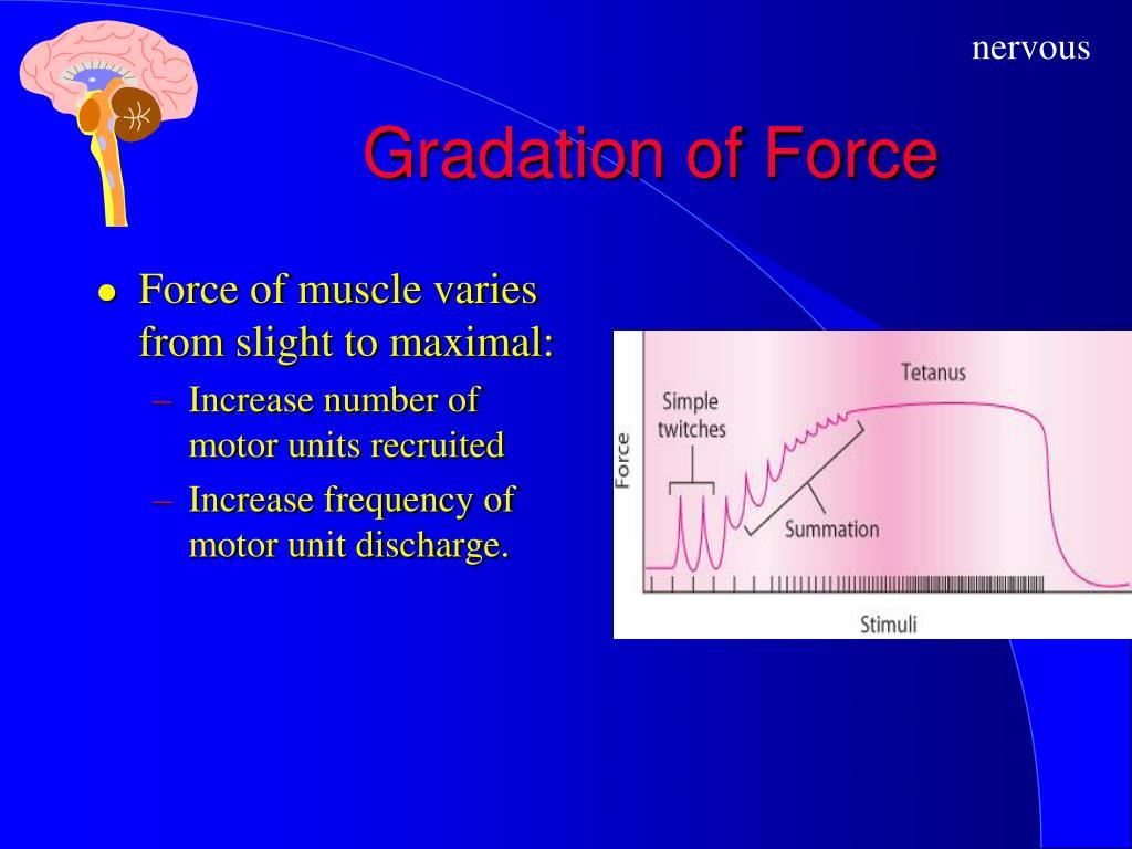 Gradation of Force