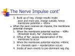 the nerve impulse cont