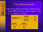 cost minimization16