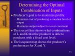 determining the optimal combination of inputs