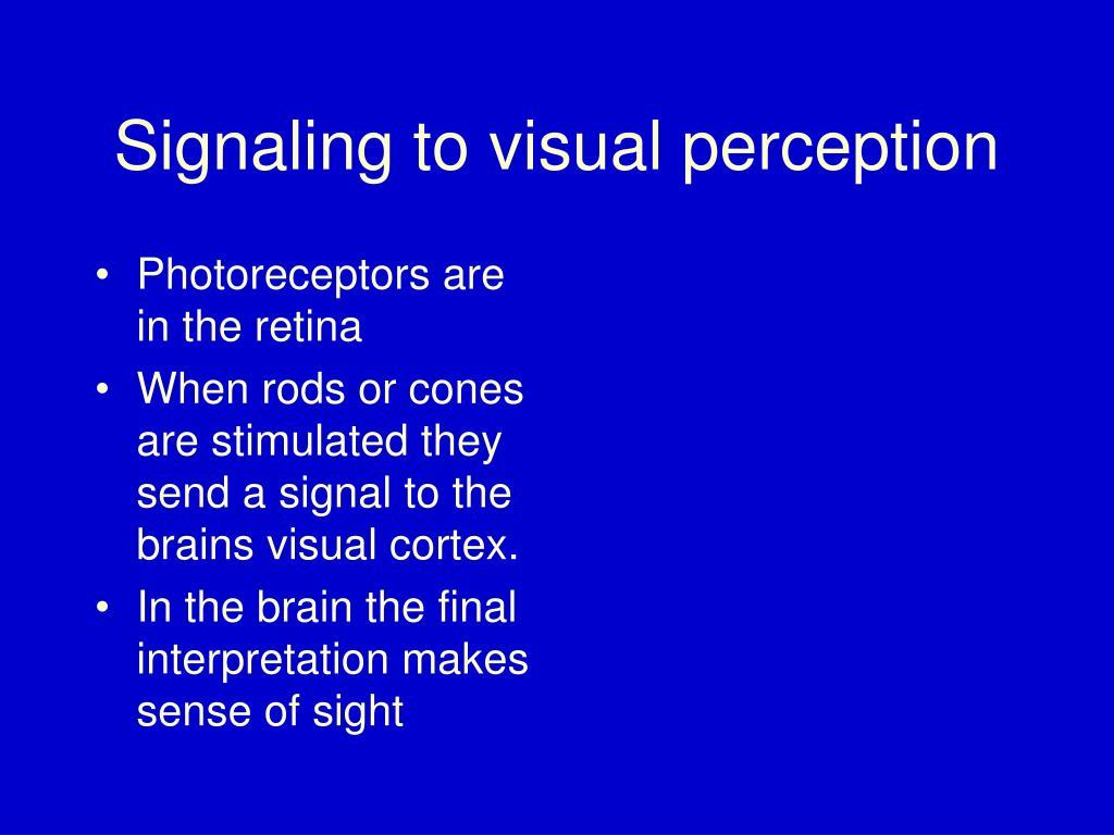 Photoreceptors are in the retina
