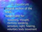c cerebrum