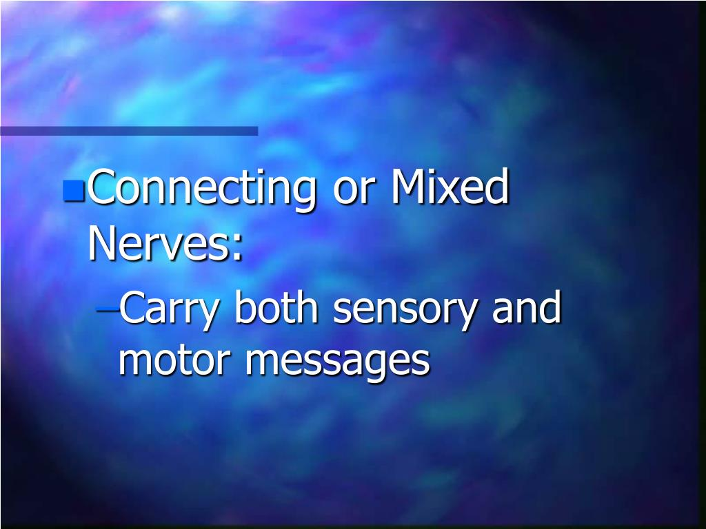 Connecting or Mixed Nerves: