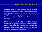 neurobiology of meditation