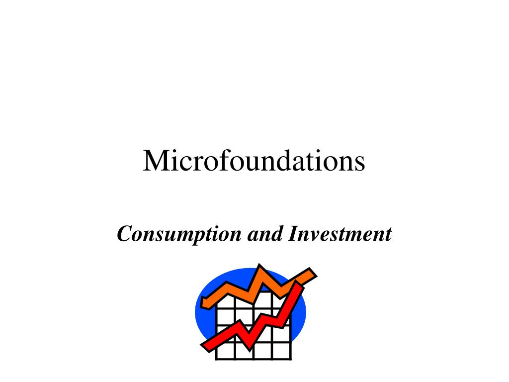 microfoundations l.