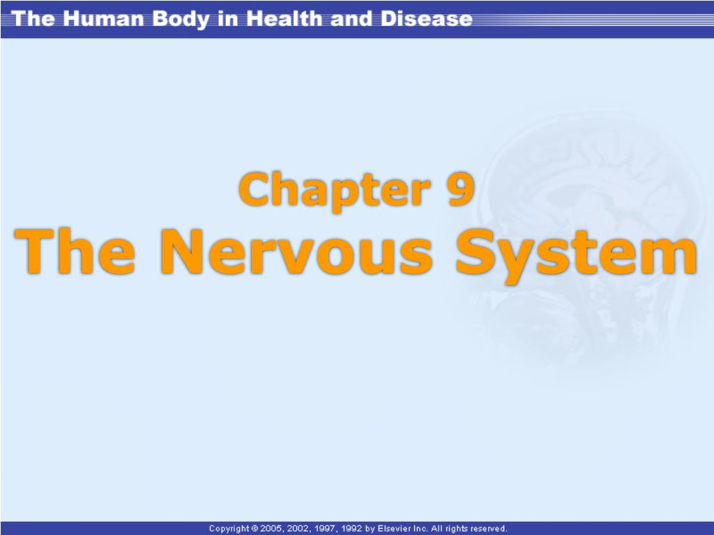 chapter 9 the nervous system l.