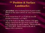 position surface landmarks