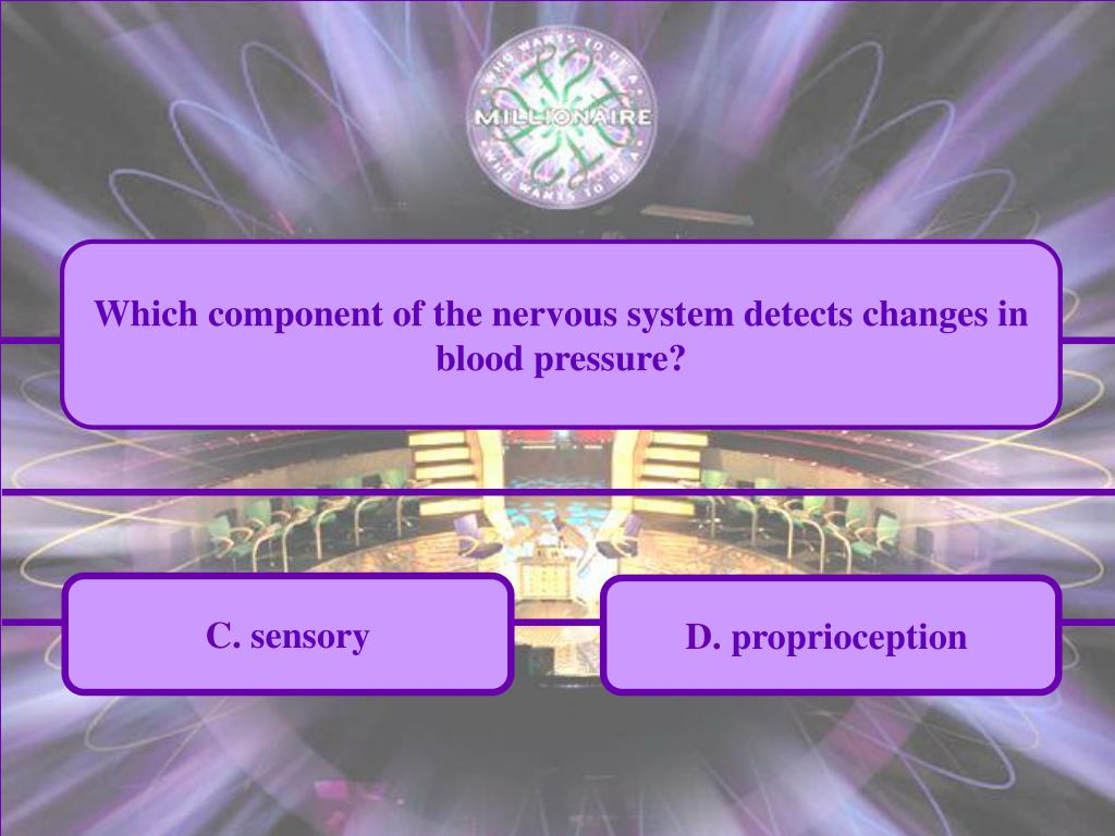 Which component of the nervous system detects changes in blood pressure?