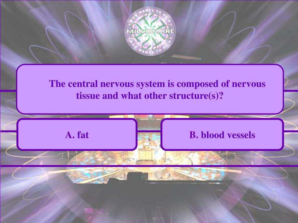 The central nervous system is composed of nervous tissue and what other structure(s)?