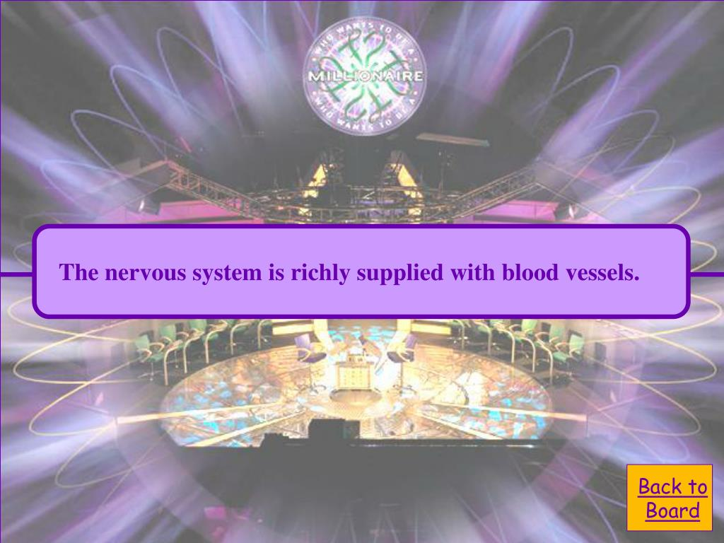 The nervous system is richly supplied with blood vessels.