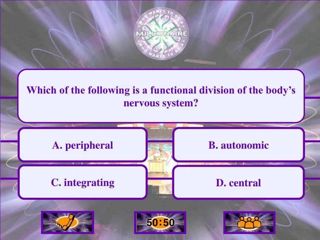 Which of the following is a functional division of the body's nervous system?