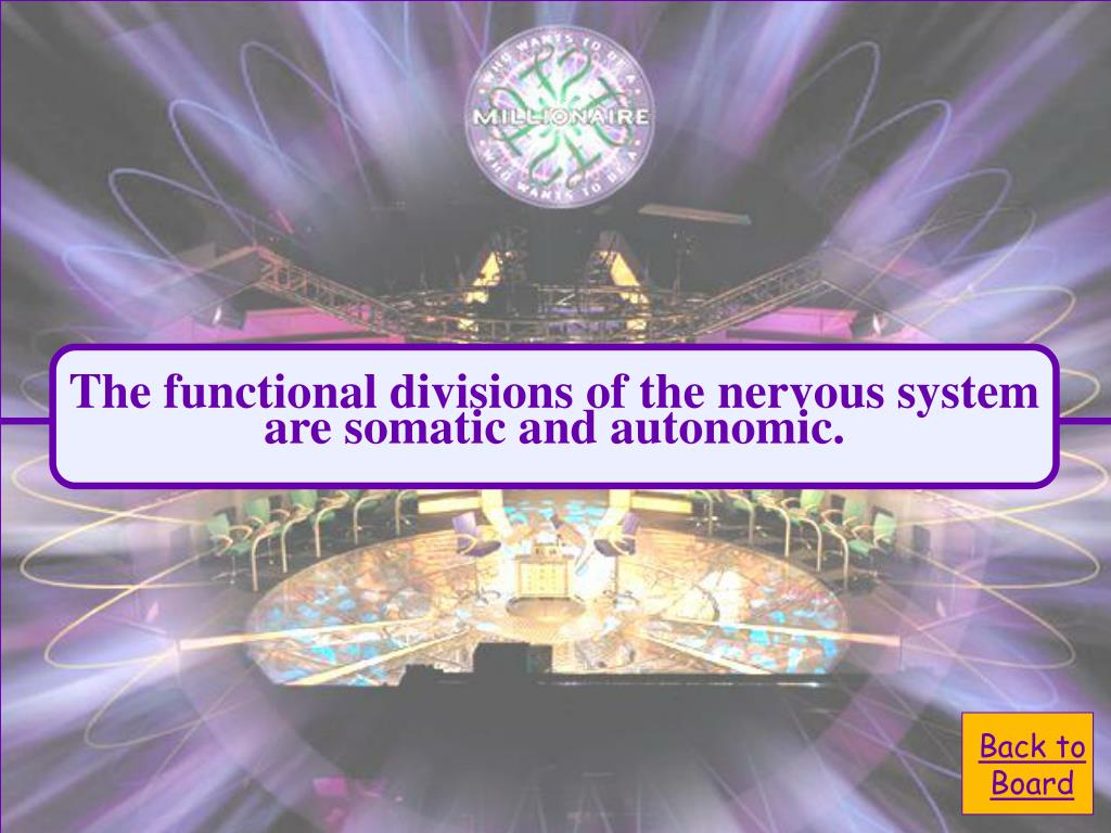 The functional divisions of the nervous system