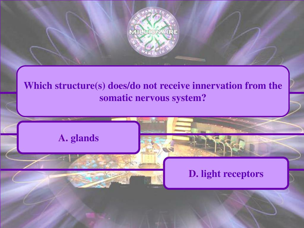 Which structure(s) does/do not receive innervation from the somatic nervous system?
