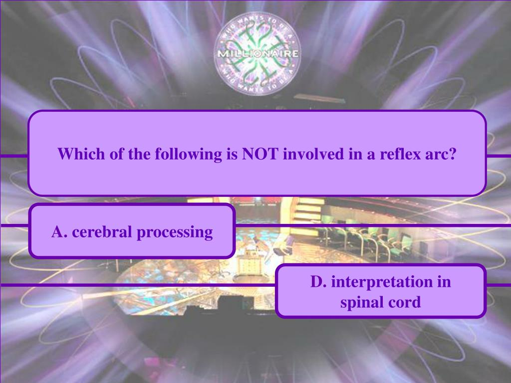 Which of the following is NOT involved in a reflex arc?