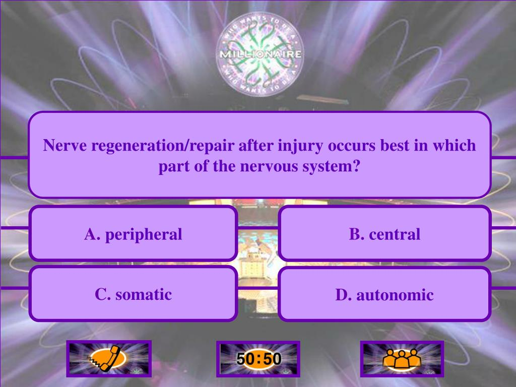 Nerve regeneration/repair after injury occurs best in which part of the nervous system?