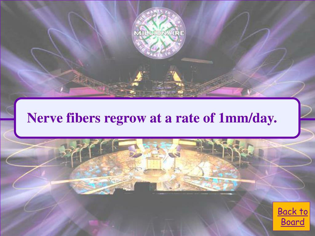 Nerve fibers regrow at a rate of 1mm/day.