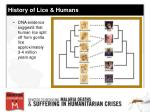 history of lice humans