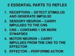 5 essential parts to reflex
