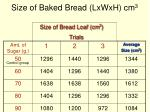 size of baked bread lxwxh cm 342