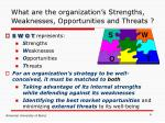 what are the organization s strengths weaknesses opportunities and threats