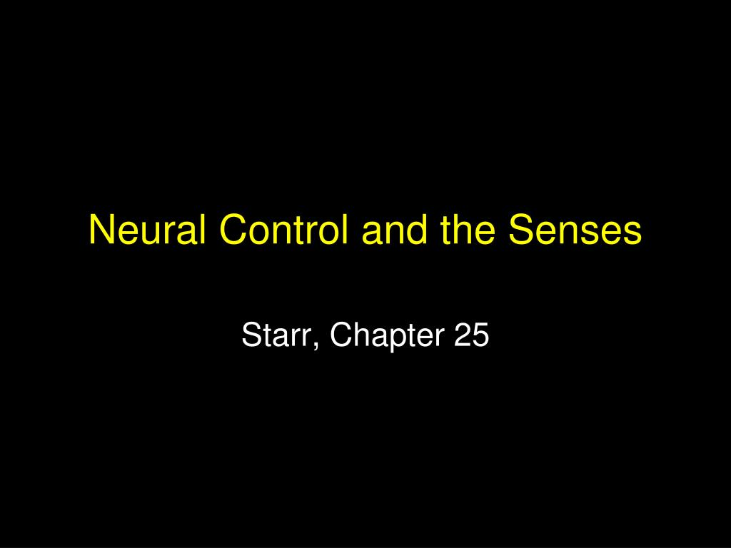 neural control and the senses l.